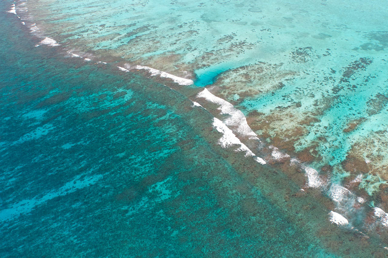 The Mesoamerican Barrier Reef, as seen from a plane. Photo by Riikc