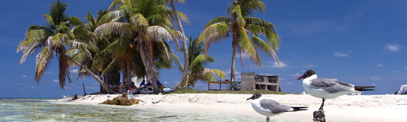 The Silk Cayes in Belize